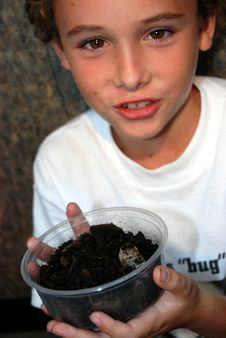 Free Boy With Chelorrhina Polyphemus Beetle Grub Royalty Free Stock Images - 6847699
