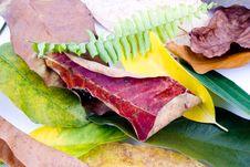 Free Autumn Leaves On White Royalty Free Stock Image - 6848146