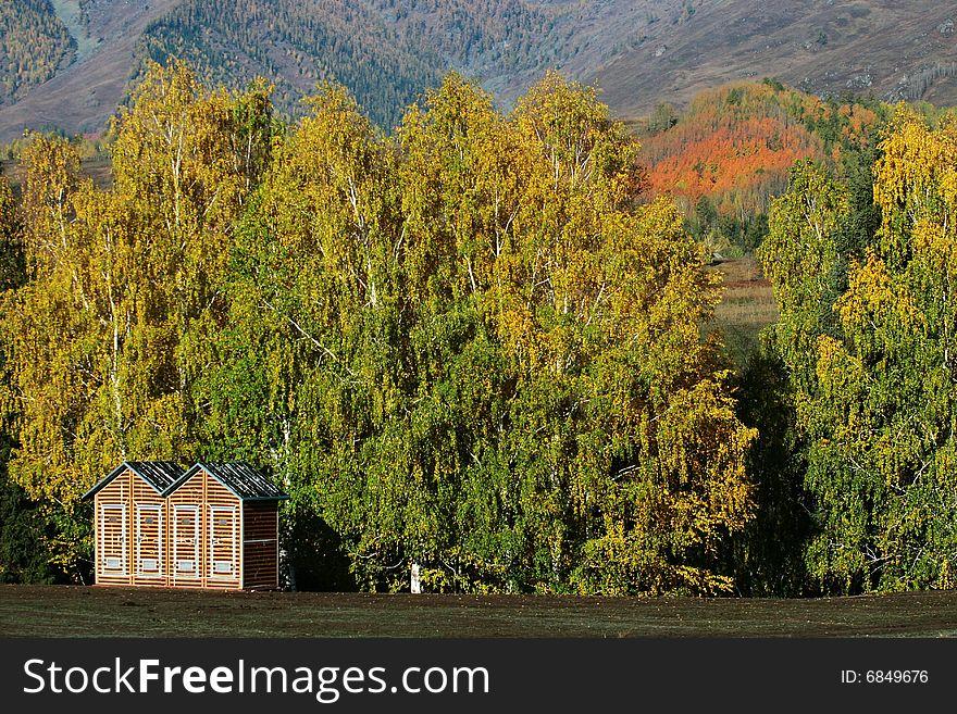 Small cabin in village