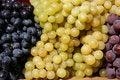 Free Grapes Stock Image - 6857341