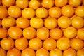 Free Mandarines Royalty Free Stock Photography - 6857407