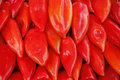 Free Red Peppers Royalty Free Stock Photo - 6857555