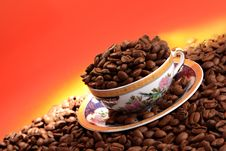 Free Coffee Beans Royalty Free Stock Image - 6851116