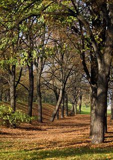 Free Autumn Stock Photography - 6851752