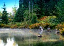 Free Misty Lagoon Stock Photo - 6856130