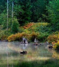 Free Misty Lagoon Stock Photography - 6856152