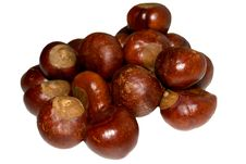 Free Chestnuts Stock Image - 6856291
