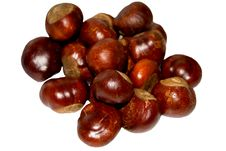 Free Chestnuts Stock Photo - 6856370