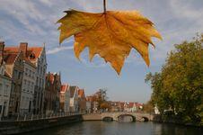 Free Fall In Brugge, Belgium Stock Photos - 6858933