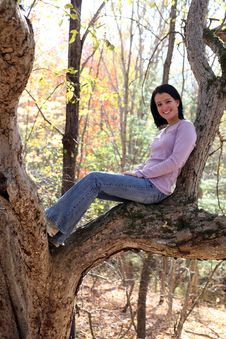 Free Pretty Teen Sitting High Up In A Tree Royalty Free Stock Photo - 6859305