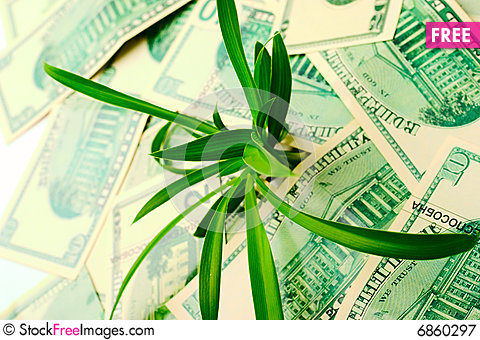 Free The Increase In Dollar Quotes Royalty Free Stock Photography - 6860297
