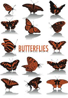 Free Butterflies Silhouettes Royalty Free Stock Photography - 6861007