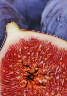 Free Figs Stock Images - 6862954