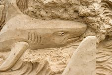 Free Sand Shark Royalty Free Stock Photos - 6863238