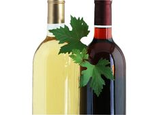 Free Bottles Of Red And White Wines With Grape Leafs Stock Photography - 6863362