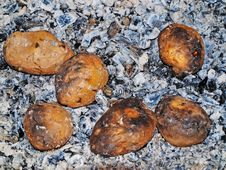 Free Potato On Coals. Royalty Free Stock Photo - 6863535