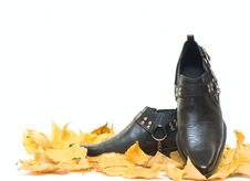 Free Mens Shoes And Fall Leafs Stock Photo - 6864440