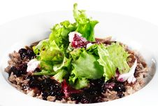 Breast Of Duck Salad Stock Photography