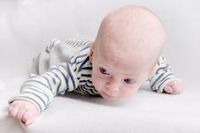 Free Newborn Baby Stock Image - 6866321