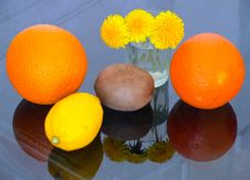 Free Kiwi,  Lemon, Orange, Dandelions Stock Photos - 6869533