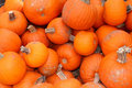 Free Pumpkins For Sale Royalty Free Stock Image - 6870716