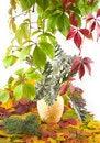 Free Autumn Bouquet In Yellow Vase Royalty Free Stock Photo - 6876635