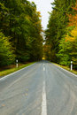 Free Road In Autumn Royalty Free Stock Image - 6877686