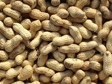 Free Peanuts Stock Image - 6870571
