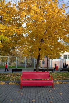 Free Red Bench In Autumn Park Royalty Free Stock Images - 6871119