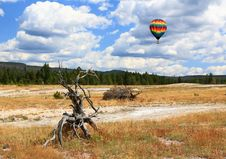 Free Upper Geyser Basin In Yellowstone Royalty Free Stock Photo - 6872345