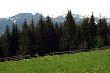 Free Green Meadow And High Mountains Royalty Free Stock Image - 6872726