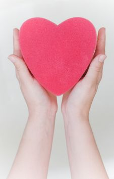 Free Heart Sponge In Hands Stock Photo - 6872860