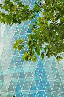 Free New Modern Business Centre Royalty Free Stock Photo - 6873205