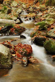 Free Autumn Creek Stock Photo - 6874310