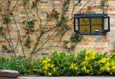 Brick Hut And Plants Stock Photos