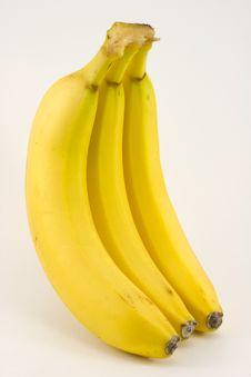 Bunch Of Bananas Isolated Stock Image