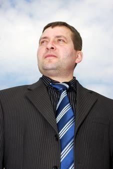 Free Portrait Of Businessman Stock Images - 6875974