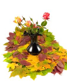 Free Autumn Roses Black Vase Royalty Free Stock Images - 6876649
