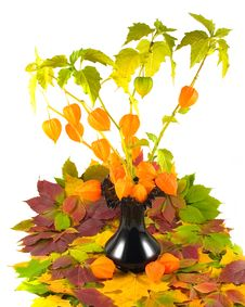 Flowers With Fruits In Black Vase Stock Images