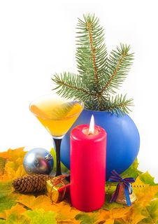 Fur-tree Branch In Dark-blue Vase Stock Images