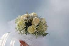 Free Wedding Royalty Free Stock Photo - 6878575