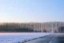 Free Frozen Countryside Stock Photos - 6879563