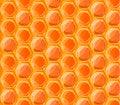Free Tasty Honey Honeycombs, Seamless Pattern Stock Photography - 68756692