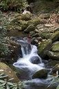 Free Mountain Stream Stock Photos - 6885393