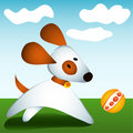 Free Dog Plays With Ball Royalty Free Stock Photography - 6889037