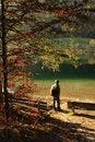 Free Lake Hintersee, Bavaria Royalty Free Stock Images - 6889629
