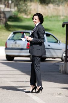 Free Businesswoman At Work Stock Images - 6882784