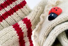 Free Woollen Hand-made Socks With A Wooden Lady-bird Royalty Free Stock Photos - 6882828