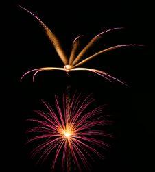 Free Fireworks On Black Royalty Free Stock Photos - 6882878
