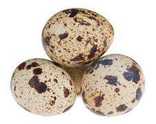 Free Four Quail Eggs In Pyramid Stock Image - 6883411